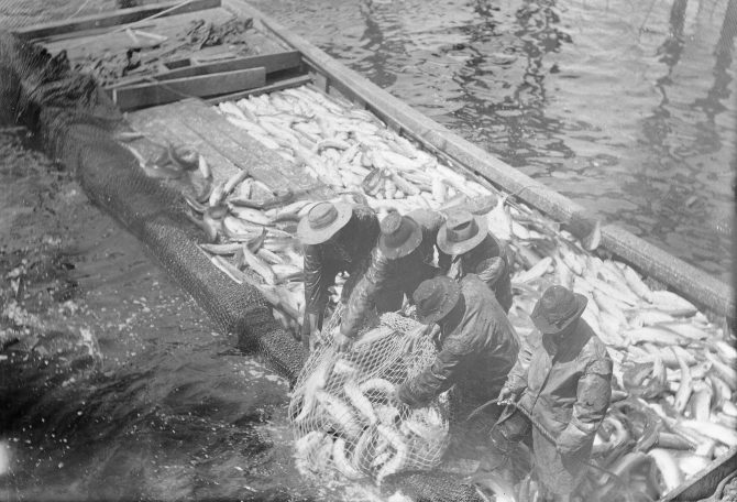 Image of a salmon trap.